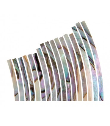 Abalone rozet 1.6mm